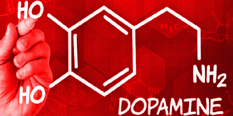 Top 8 Best Natural Dopamine Boosters