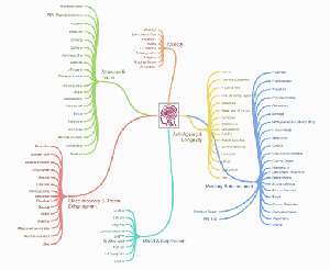 nootropics mind map