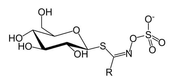 Glucosinolate-chemical-symbol