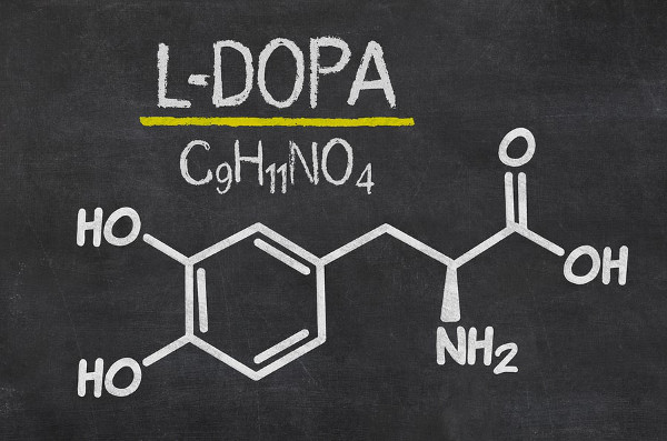 L-Tyrosine and Adderall: Be warned, Read Before Mixing! - Dr